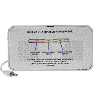Schema Of A Transcription Factor Protein Portable Speaker