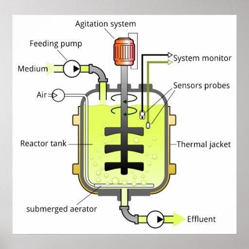 Schematic Structure of a Batch Type Bioreactor Print