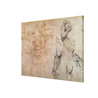 Scheme for the Sistine Chapel Ceiling, c.1508 Canvas Print