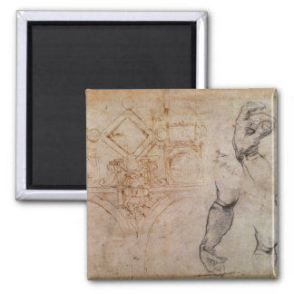 Scheme for the Sistine Chapel Ceiling, c.1508 Magnet