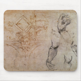 Scheme for the Sistine Chapel Ceiling, c.1508 Mouse Pad
