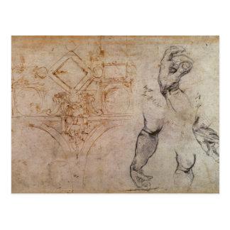 Scheme for the Sistine Chapel Ceiling, c.1508 Postcard