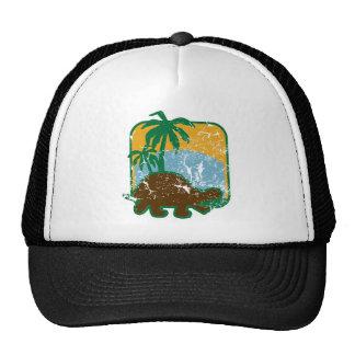 schildkroete_dd_used.png trucker hat