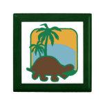 Schildkröte Cajas De Joyas