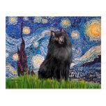 Schipperke 2 - Starry Night Postcard