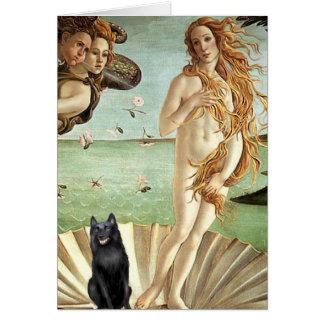 Schipperke 5 - Birth of Venus Card