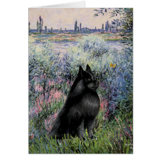 Schipperke 6 - By the Seine Card