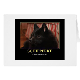 Schipperke Breed Above the Rest Card