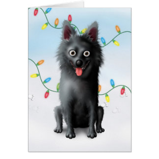 Schipperke Christmas Card