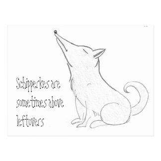 Schipperke Dog Cartoon Postcard