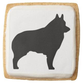 Schipperke dog silhouette square shortbread cookie