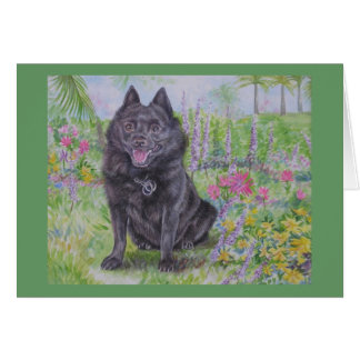 Schipperke in a Garden Card