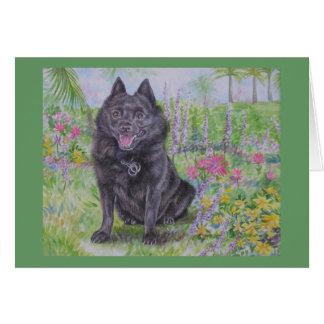 Schipperke in a Garden Card