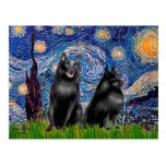 Schipperkees (two,5&6) - Starry Night Post Cards
