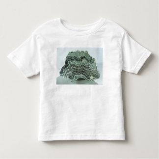 Schist rock toddler t-shirt