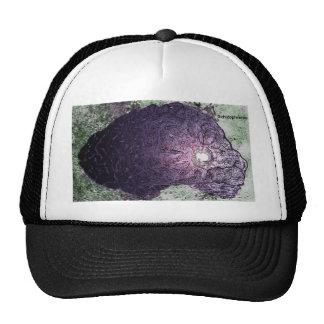 Schizophrenia Mesh Hat