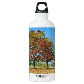 Schleichera oleosa/Ceylon oak/kusum tree Water Bottle
