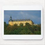 Schloss Friedrichstein Mousepads
