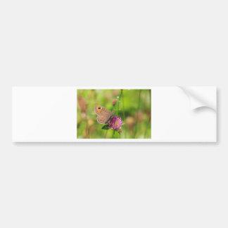 Schmetterling Bumper Sticker