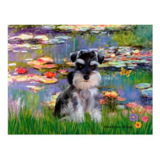 Schnauzer 10N pup - Lilies 2 Postcard