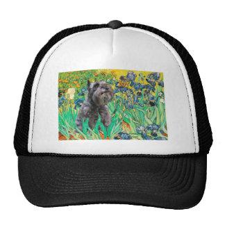 Schnauzer 12 - Irises Mesh Hats