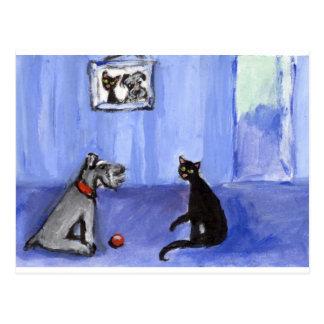 Schnauzer Black cat greetings Postcard