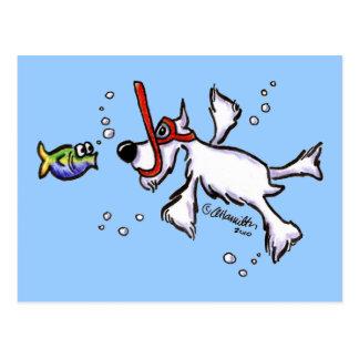 Schnauzer blanco que bucea debajo del mar azul postal