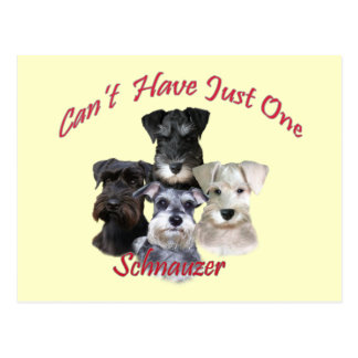 Schnauzer Can't Have Just One Postcard