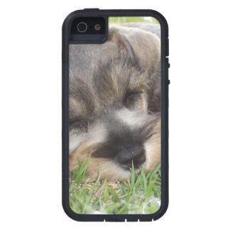 Schnauzer iPhone 5 Cases
