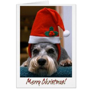 Schnauzer de las Felices Navidad Felicitación