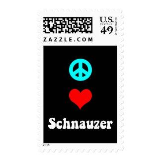 Schnauzer del amor de la paz