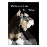 Schnauzer del cumpleaños tarjeta de felicitación