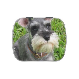 Schnauzer Dog Candy Tin