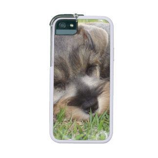Schnauzer Dog Case For iPhone 5/5S