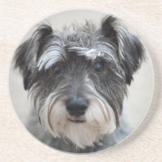 Schnauzer Dog Coaster