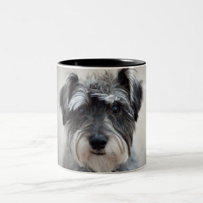 Schnauzer Dog Coffee Cup
