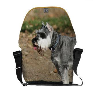 Schnauzer dog courier bag