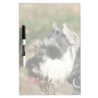 Schnauzer dog dry erase boards