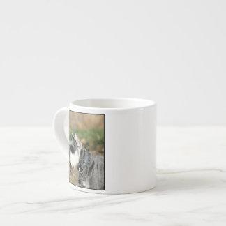 Schnauzer dog espresso cups