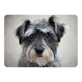 "Schnauzer Dog 5"" X 7"" Invitation Card"