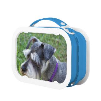 Schnauzer Dog Yubo Lunch Boxes