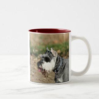 Schnauzer dog mug