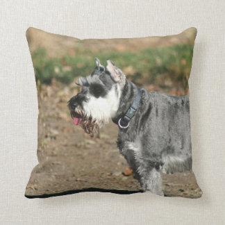 Schnauzer dog pillows