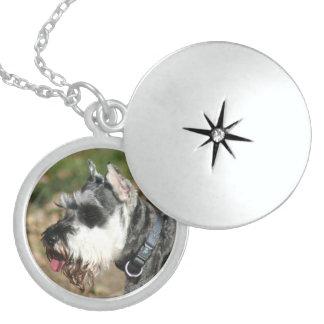 Schnauzer dog round locket necklace