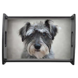Schnauzer Dog Serving Tray