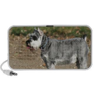 Schnauzer dog speaker