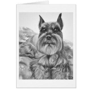 Schnauzer Drawing two Card