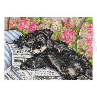 Schnauzer Dreams Print Card