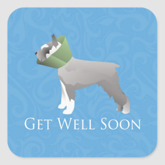 Schnauzer Get Well Soon Design Square Stickers