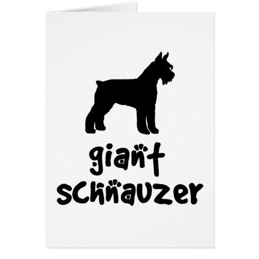 Schnauzer gigante con el texto fresco tarjeta de felicitación
